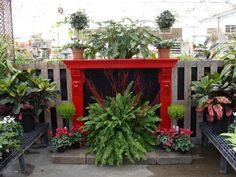 One of the houseplant displays by Don & Rick in the Greenhouse at Hillermann Nursery & Florist