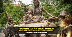 Οι εξελίξεις συνεχίζονται στο central park στην Νέα Υόρκη. Άσχημε εικόνες θα έρθουν σύντομα στο φως της δημοσιότητας, που δύσκολα θα τις πιστέψουμε. Central Park, American Quotes, Yorkie, Garden Sculpture, Outdoor Decor, Saints, Youtube, Yorkies, Yorkshire Terrier