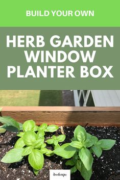 Garden windows are really cool and convenient. Read our DIY guide for building your own window garden planter box, and then hang this garden window planter box outside your window for easy access to your all your favorite herbs.