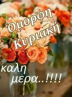 Beautiful Pink Roses, Blondies, Good Morning, Beautiful Pictures, Cross Stitch, Mom, Birthday, Greek, Buen Dia