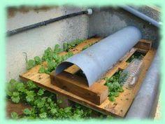 Gireaud: heliciculture