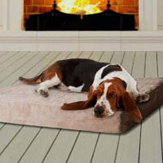 PAW Memory Foam Dog Bed with Removable Cover       >>>>> Buy it now    http://amzn.to/2bDEtuQ