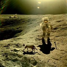 Another cat on the moon just passing by...