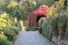Great garden near Sacre Coeur Paris