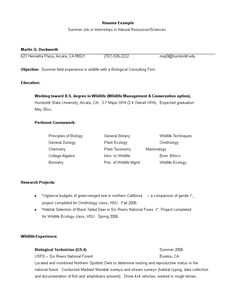 Janitor Resume Sample Gorgeous Janitor Resume Sample Template Example Cv Formal Design .
