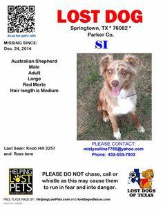 #LOSTdog #TX