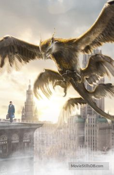 Fantastic Beasts Inter textless Thunderbird by Weird Creatures, Magical Creatures, Fantasy Creatures, The Beast, Fantastic Beasts Thunderbird, Fantasy Beasts, Fantastic Beasts And Where, Harry Potter Art, Hogwarts