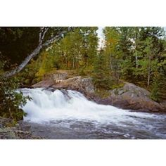 Waterfall in a forest Oxtongue River Algonquin Provincial Park Ontario Canada Canvas Art - Panoramic Images (36 x 25)