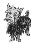 Toto, the Cairn Terrior drawn by W.W. Denslow for L. Frank Baum's Wizard of Oz.