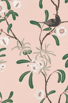 Antonia Grey is a wallpaper hosting a beautiful blackbird in the midst of willow-leaved pear and flowering Eucryphia. The wallpaper gives the room an air of elegance and exotic luxury. Pearl Wallpaper, Print Wallpaper, Fabric Wallpaper, Ras El Hanout, Retro Home Decor, Wells, Chinoiserie, Damask, Icon Design