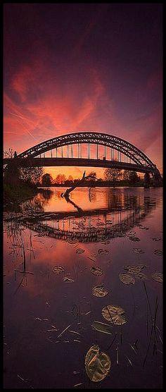 Eye on the sunset #by Captain Nikon #bridge sunset sun sky red reflection water lake sea landscape nature