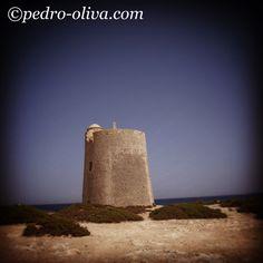 #salinas #ibiza #ibizaplaya #ibizabeach #pedroolivaibiza #escavallet