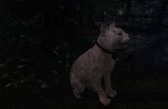 Pets of Skyrim at Skyrim Nexus - mods and community