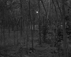 cavetocanvas:  Alec Soth, from the series Broken Manual, 2006