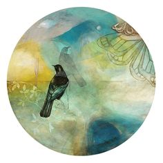 Delightful circular artwork of a Tui bird - by Kathryn Furniss. Art-prints available from www.imagevault.co.nz