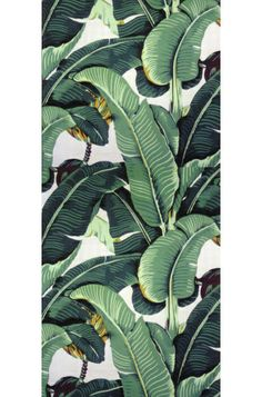 Banana leaf prints are having a comeback of their own. If you're up for tropical, you can't beat the iconic Martinique wallpaper made famous by the Beverly Hills Hotel.
