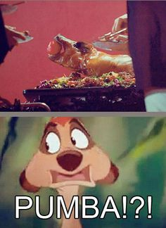 THG/Lion King, greatest thing ever.
