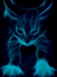 Discover & share this Neon Cat GIF with everyone you know. GIPHY is how you search, share, discover, and create GIFs. Fractal Images, Fractal Art, Blog Pictures, Animal Pictures, Funny Cat Videos, Funny Cats, Neon Cat, Magic Cat, Butterfly Pictures