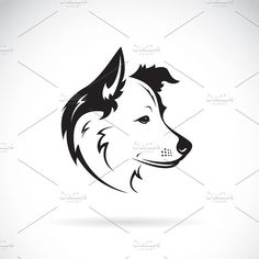 Vector of a border collie dog. Pet. by yod67 on @creativemarket