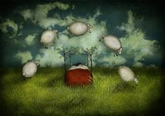 Counting sheep by Majali