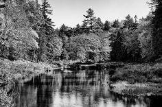 #Adirondacks #ADK #MooseRiver - Moose River Calm - Old Forge New York