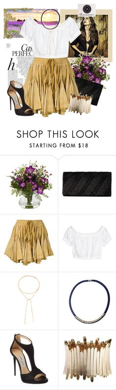 """""""Angieberrys"""" by sierraday ❤ liked on Polyvore featuring Whiteley, Nearly Natural, Jessica McClintock, Vivienne Westwood Gold Label, H&M, Madewell and Jimmy Choo"""