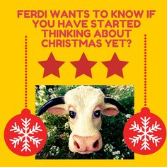 Ferdi wants to know if you have started thinking about Christmas yet?  Don't forget to give us a yell at the Rest Point & Hereford Steakhouse if you will be having any pre-Christmas celebrations this year.