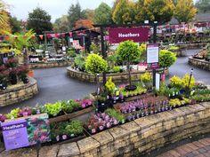 Extensive range of Garden furniture, BBQ's, houseplants & gifts. Garden Center Displays, Garden Centre, Garden Nursery, Plant Nursery, Greenhouse Plans, Autumn Garden, Store Displays, Cafe Bar, Houseplants