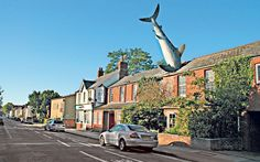 A fishy tail: not all alterations to the roof of a property require planning permission Photo: Alamy