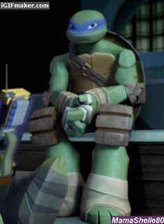 I Like Turtles!(Especially the TMNT Kind)