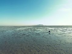 Cholla Bay, Mexico