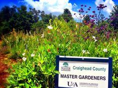 Craighead County Master Gardeners Butterfly Garden Near NEA, Jonesboro, Arkansas and Memphis, Tennessee Jonesboro | Memphis | Construction | Architecture | Vintage | IPhoneography | Arkansas | From www.arkansasconstruction.co
