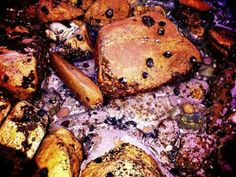 Struisbaai snails Weekend Breaks, Snails, Meat, Food, Eten, Meals, Diet