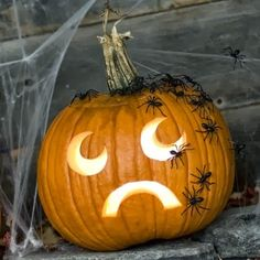 Halloween! Do this to a fake pumpkin