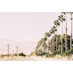 Marmont Hill - 'On the Road' by Morgan J Hartley Painting Print on Wrapped Canvas