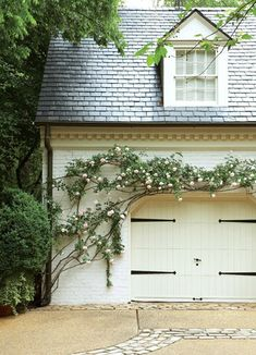 Climbing Vine | Design Chic | Atlanta Homes and Lifestyles