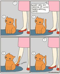 Cats 🐱 - Cat, cat memes, cats funny, cats and kittens and cats cute. Crazy Cat Lady, Crazy Cats, Weird Cats, Cat Vs Human, Catsu The Cat, Living With Cats, Cat Comics, Owning A Cat, Pretty Cats