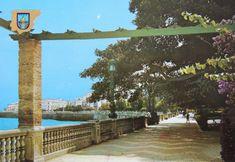 Bonita postal de La Alameda. Cadiz, Andalusia, Spain, Santa Maria, Vintage Postcards, Youth, Souvenirs, Pretty, Sevilla Spain
