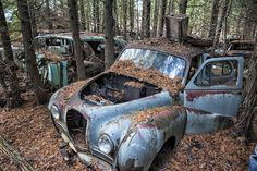 Automotive Mystery by brome #fadighanemmd