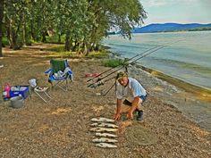 Nagy ho-ho-horgászok, városbéli puhányok, nyavalyások! Ideje cselt a cselre halmozni!