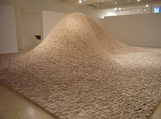 2x4 Landscape by Maya Lin: Made of 65,000 boards set on irregular end, this sculpture is both a 10' hill and a wave.