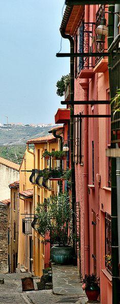 Collioure, Languedoc Roussillon