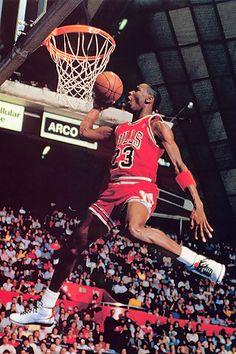 Chicago Bulls Fan