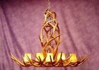 Rocky Mountain Mule Deer Chandelier
