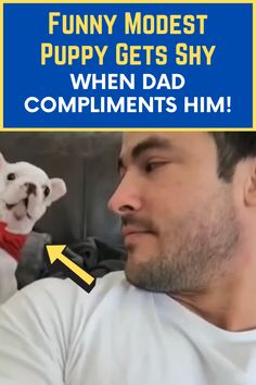 In a video shared to YouTube four years ago, a tiny frenchie pup can be seen sitting on the couch behind a man. The pup is wearing a red bandanna that looks, quite frankly, adorable. Awesome Definition, Viral Trend, Strike A Pose, Compliments, Pup, Casual Outfits, Dads, Content, Couch