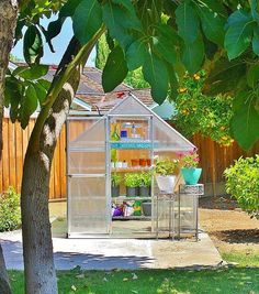 shopsavesequin| my playhouse |  #greenhouse #palram #hayneedle #sunday #today #greenthumb #weekend #loveit shopsavesequin• • • • •  #fblogger #fashionblogger #bayareablogger #sfblogger #styleblogger #stylist #lifestyleblogger #life #lifestyle #bblogger #beautyblogger #bbloggers #instafashion #instadaily #instafamous #instagood #photooftheday christielaveryI seriously am super jealous over this greenhouse amazing-ness