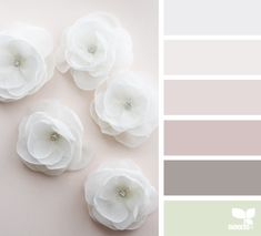 { flora tones } - https://www.design-seeds.com/studio-hues/maker/flora-tones-41