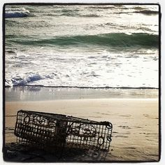 Island Crab Trap (credit ⚓ René Marie Photography) ⚓ Beach Cottage Life ⚓⚓ http://www.etsy.com/shop/ReneMariePhotography