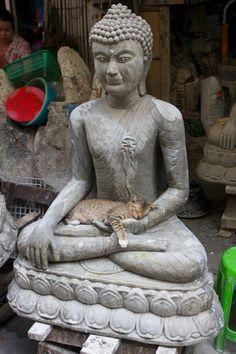 Cat on the lap of a stone Buddha, Bangkok, Thailand. By Christopher B.(CVMB2010)