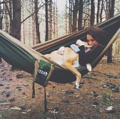 """What To Pack For A Road Trip With Your Dog - Dog-safe insect repellent (for camping, """"glamping"""" and rustic cabin-in-the-woods scenarios especially). Commercial and natural options available."""